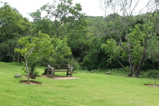 Walter Sisulu National Botanical Gardens: Benches all over the garden in quiet corners as well. Usually in memory of loved ones.