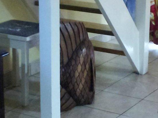 Chrisanns Beach Resort: under the stairs