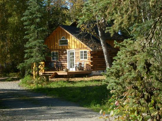 Little Cabin In The Woods Picture Of Denali Fireside Cabins