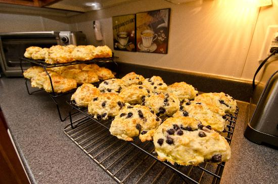 Antigonish Evergreen Inn : Blueberry Scones