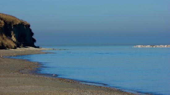 Parco Naturale Monte San Bartolo: Spiaggia e Monte San bartolo.