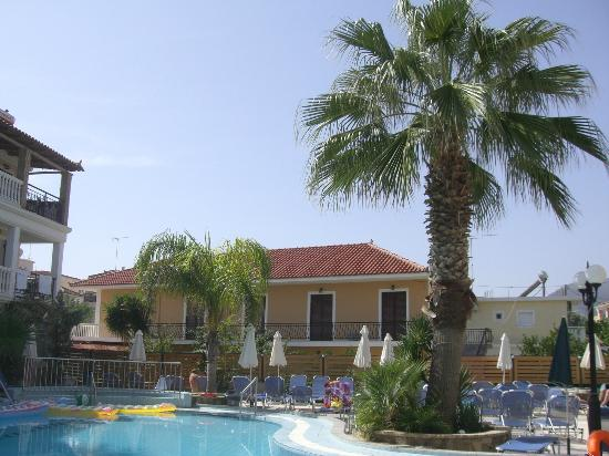 Zante Plaza Hotel & Apartments: palm tree and pool