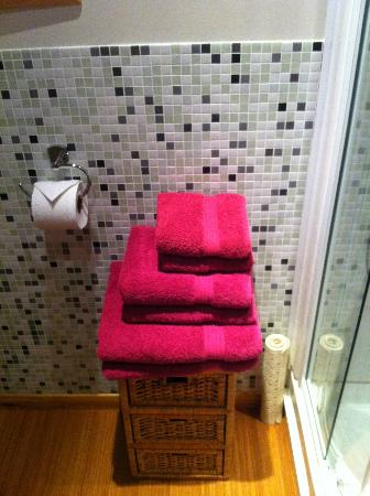 Rosehill Lodges: Big fluffy towels