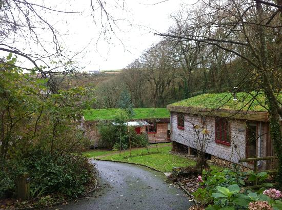 Other Rosehill lodges further down the hill