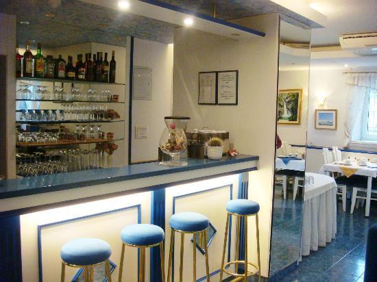 Garni Hotel Vila Bojana: Bar
