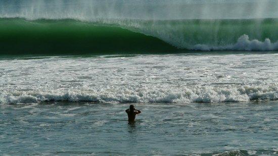 Casa Ariki: surf