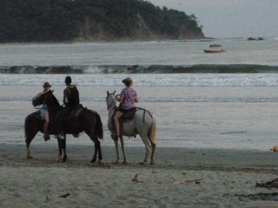 Samara Beach: dusk horseback riding on the beach