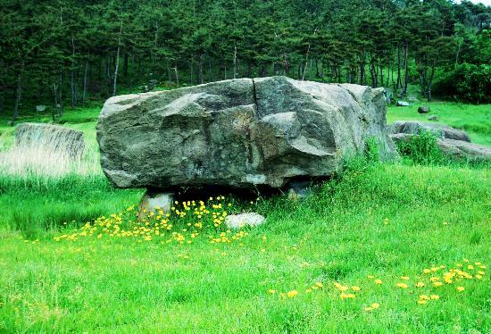 Gochang, Hwasun, and Ganghwa Dolmen Sites : Gochang Dolmen