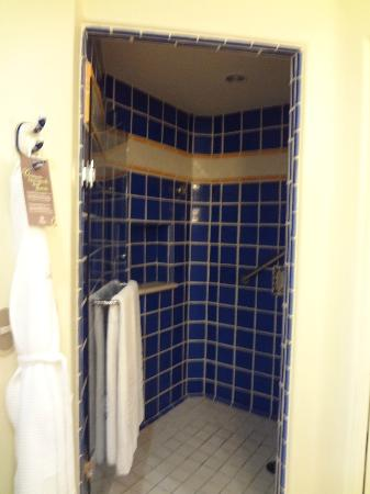Sheraton Grand Los Cabos Hacienda Del Mar: Spacious standalone shower (Garden View Room)