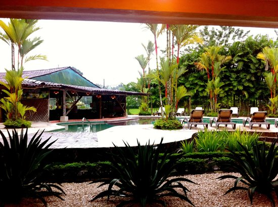 Arenal Backpackers Resort: view from inside the dorm room