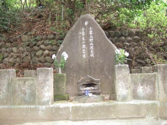 Tozen-ji Temple : お墓1