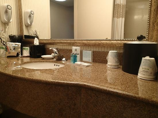 Hampton Inn & Suites  by Hilton Toronto Airport: Bathroom Sink