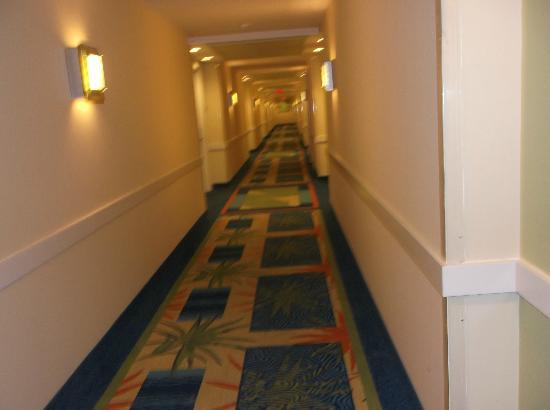 Renaissance Curacao Resort & Casino: este es elpasillo de la habitación