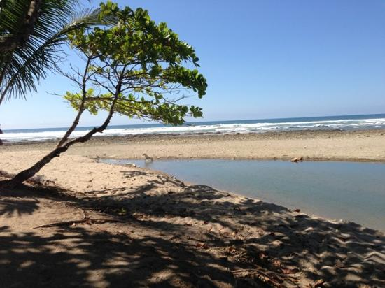 Villas Hermosas: view near the beach