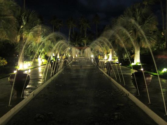 Now Larimar Punta Cana: Fountains