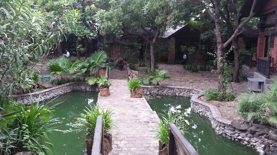 Bagan Central Hotel : Little pond outside our room!