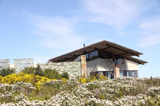 Grootbos Private Nature Reserve : Forest Lodge Restaurant