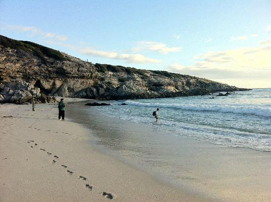 Grootbos Private Nature Reserve : Playing around on the Beach