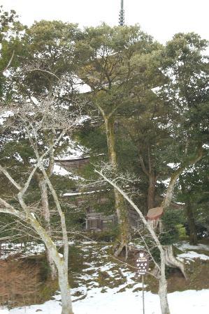 Myojo-ji Temple: 五重塔