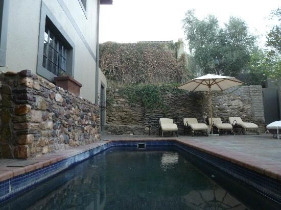Olive Grove: Plunge Pool