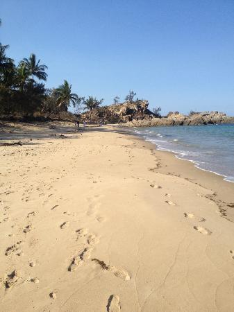 Thala Beach Nature Reserve: Beach view