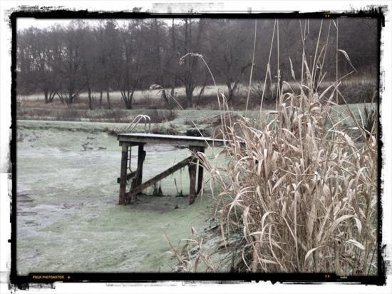 Landhaus Bärenmühle: Der Teich ohne Wasser