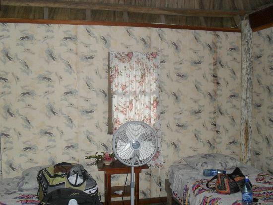 Clarissa Falls Resort: papier peint moisi