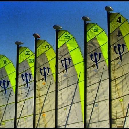 Club Med Palmiye: Palmiye Catamaranss������