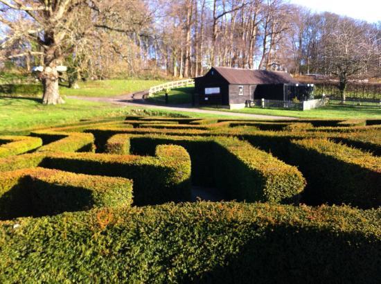 Leeds Castle Stable Courtyard Bed & Breakfast: maze and bird building