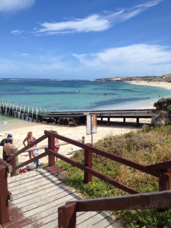 The White Elephant Beach Cafe: the view