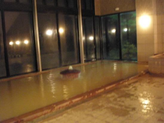 Tateshina Park Hotel: 大浴場
