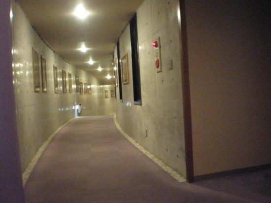 Tateshina Park Hotel: 大浴場に行く途中の廊下のギャラリー