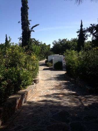 Minos Beach Art hotel: Path to the sea front