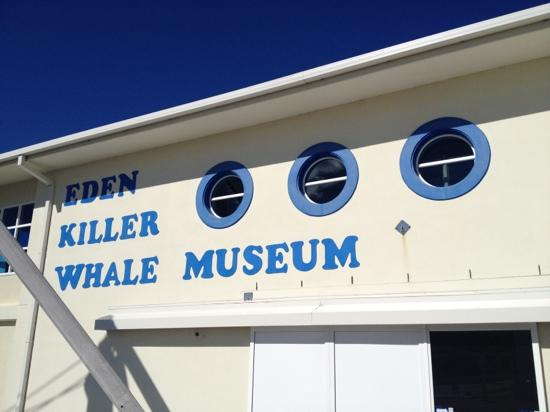 Killer Whale Museum 사진