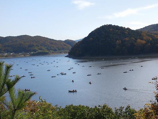 Iruka Pond: 博物館明治村の「品川燈台」からの眺め