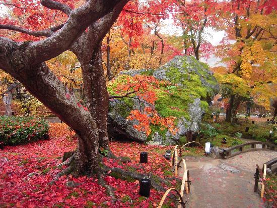 Loaring Lion Garden Picture of Hogonin Temple Kyoto TripAdvisor