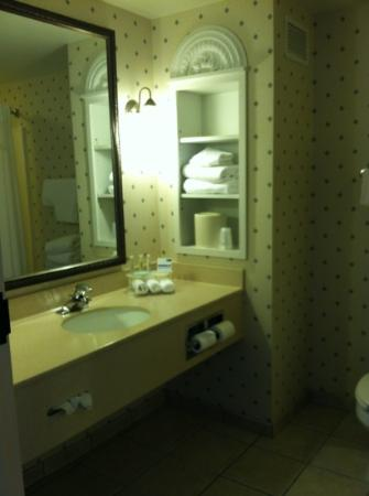 Holiday Inn Express Harrington: bathroom
