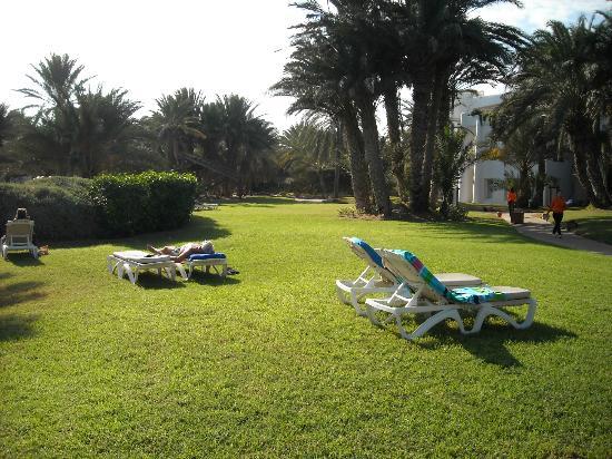 Odyssee Resort & Thalasso: jardi trés bien entretenu