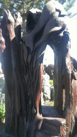 Discovery Inn Ukiah, CA: Redwood bench.