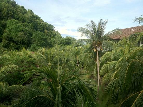 The Lanai Langkawi Beach Resort: View from room facing west towards sea