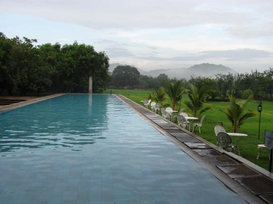 Thilanka Resort and Spa: The Pool