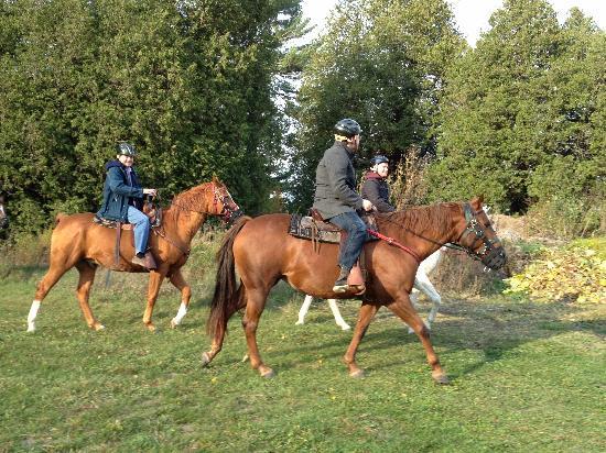 Hearthside Dining Room: horseback riding