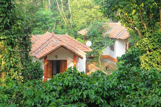 Natura Vista - A Plantation Stay