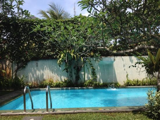 Villa Puriartha: The pool