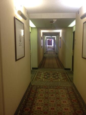 Doubletree Dallas Near the Galleria: hallway
