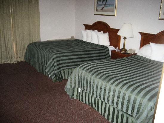 Quality Inn & Suites Redwood Coast: Zimmer 200