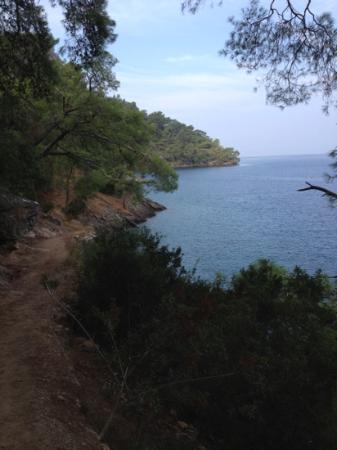 Hillside Beach Club: walking to serenity beach
