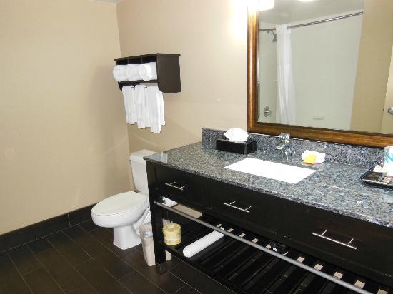 La Quinta Inn & Suites San Diego Mission Bay: sink
