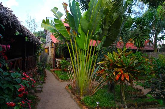 Maeva Bungalows: Jardin