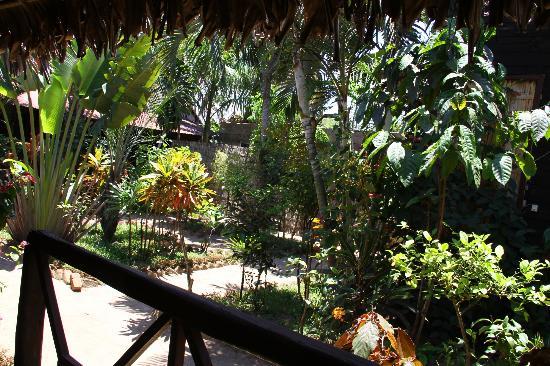 Maeva Bungalows: Magnifique jardin